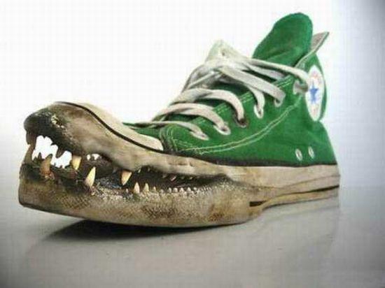 tenisówki krokodyle