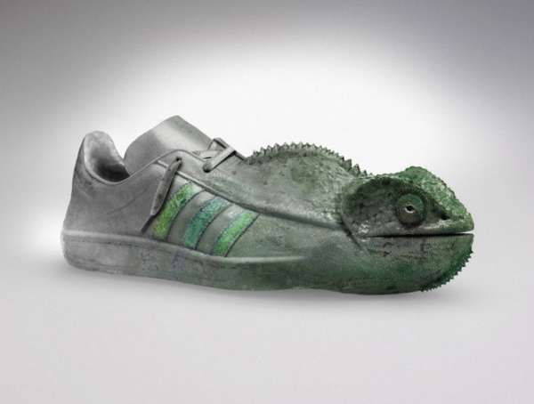 buty z kameleonem